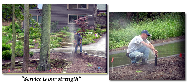 View Of Sprinkler Maintenance Workers Image